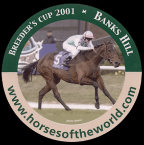 Breeder's cup 2001 - Banks Hill - www.horsesoftheworld.com