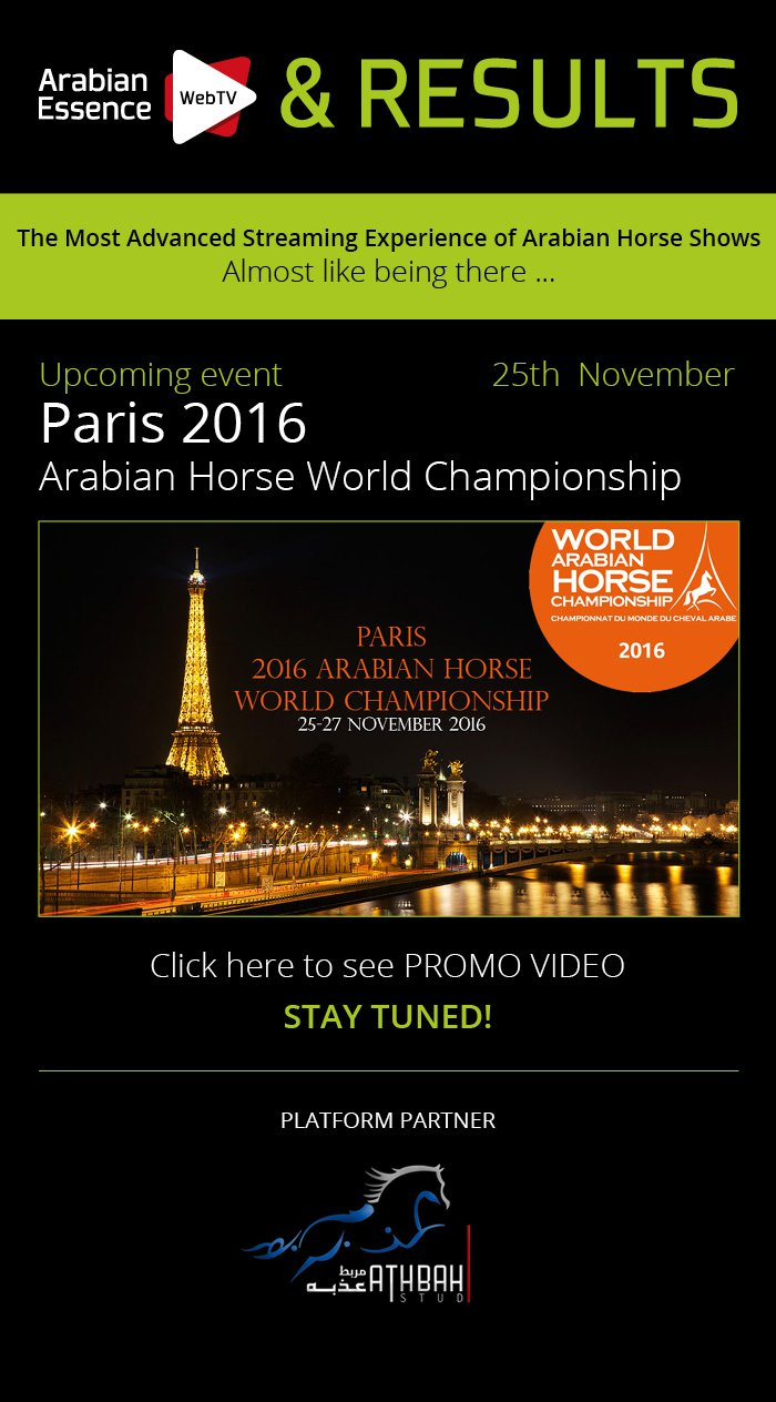PARIS 2016 ARABIAN HORSE WORLD CHAMPIONSHIP. Paris, 25th-27th november 2016