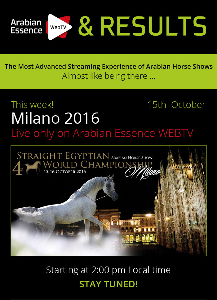 MILANO 2016 STRAIGHT EGYPTIAN WORLD CHAMPIONSHIP - THIS WEEK - LIVE ONLY ON ARABIAN ESSENCE WEBTV